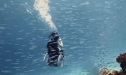 Sue Austin – The Woman Who Went Diving In Her Wheelchair